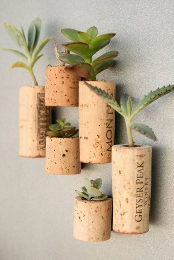 Wine cork planters on wall. These container gardening ideas offer a great way to brighten your surroundings immediately. Make your home look different unique and interesting.