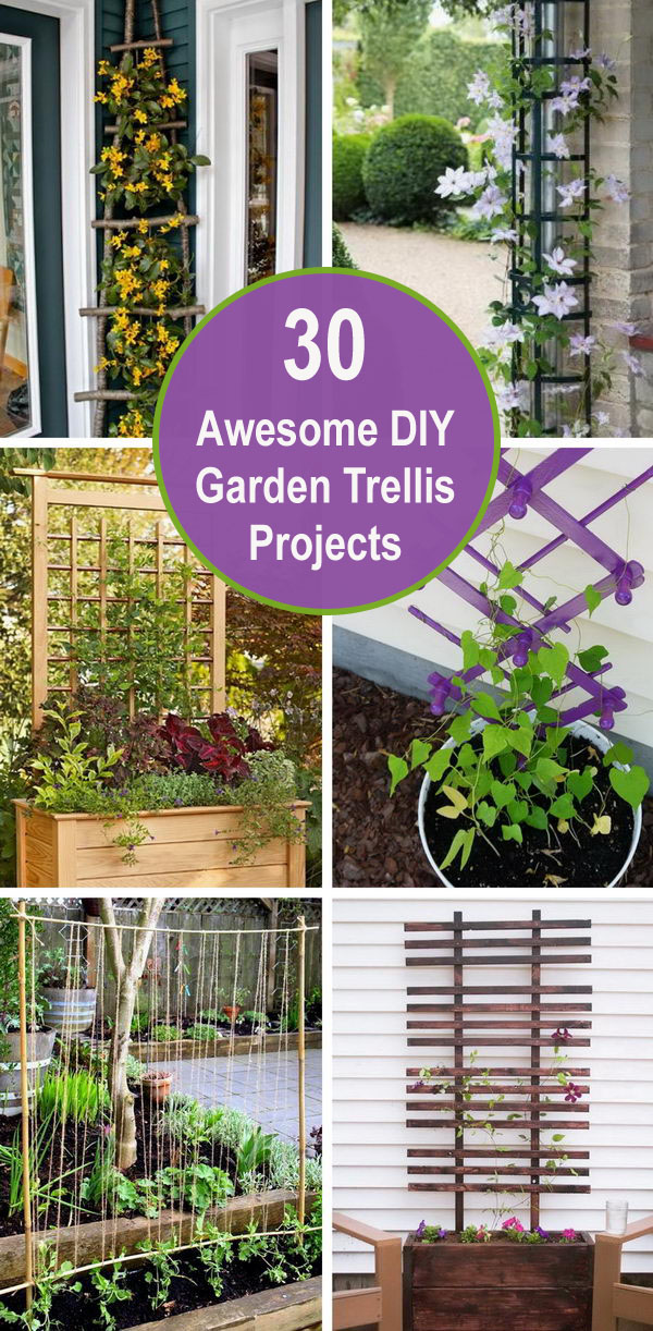 30+ Awesome DIY Garden Trellis Projects.